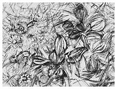 <i>Landscape</i> 1993 Etching on White BFK Rives paper Plate: 5 7/8 x 7 3/4 inches; 15 x 20 cm Sheet: 13 5/8 x 15 1/8 inches; 36 x 39 cm