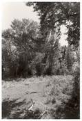 Robert Adams <I>Near Halfway, Baker County, Oregon</i> 1999-2003 Gelatin silver print 20 x 16 inches; 51 x 41 cm