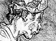 Lucian Freud