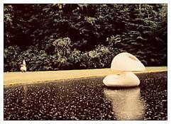 Luigi Ghirri, <i>Olanda</i>, 1973, C-print, 3 1/2 x 4 3/4 inches; 9 x 12 cm
