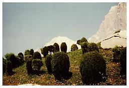 Luigi Ghirri, <i>Rimini</i>, 1977, C-print, 4 x 5 7/8 inches; 10 x 15 cm