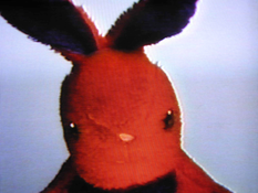 <I>Negative Bunny</i> 1994 30 min. videotape (color, stereo) Film still