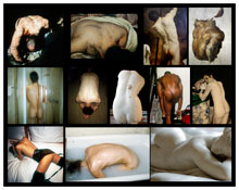 <I>The back</I> 2011 Chromogenic print 45 x 57 inches; 114 x 145 cm