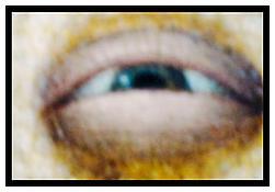 <i>The eye, Le Louvre</i> 2010 Chromogenic print 27 1/4 x 40 inches; 69 x 102 cm