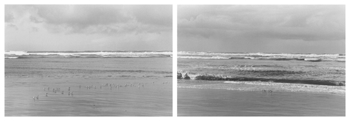 <I>On Any Given Day in Spring (IX A-B)</i> 2007 Two gelatin-silver prints Each image: 5 7/8 x 8 3/4 inches; 15 x 22 cm Each sheet: 11 x 14 inches; 28 x 36 cm