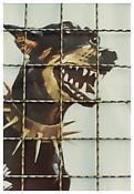 Luigi Ghirri <i>Modena</i> 1973 From the series <i>Kodachrome</i> Vintage c-print 4 5/8 x 3 1/8 inches; 12 x 8 cm