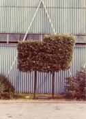 <I>Modena</i> From the series <I>Colazione sull'erba</i> 1973 Vintage c-print 7 1/8 x 5 1/8 inches; 18 x 13 cm