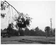 Robert Adams <I>Redlands, California</i> 1983 Gelatin silver print 15 x 18 1/2 inches; 38 x 47 cm