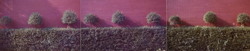 <I>Modena</i> From the series <I>Colazione sull'erba</i>  1973 Vintage c-prints mounted on carton 3 x 14 5/8 inches; 8 x 37 cm