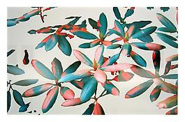 Peter Josef Abels <i>Rhododendron - Lichtgrau RAL 7035</i> 1997-2003 Acrylic, c-print 49 x 75 inches; 124 x 191 cm