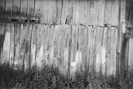 <I>Barn Wall, Meschers</i> 1950 Gelatin silver print 8 1/2 x 12 5/8 inches; 22 x 32 cm