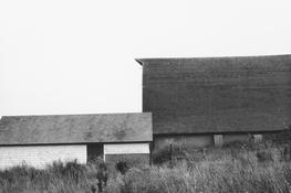 <I>Potato Barn, Long Island</i> 1968 Gelatin silver print 8 1/2 x 12 7/8 inches; 22 x 33 cm