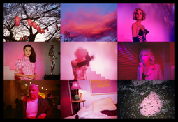 <I>Pink</i> 2016 Chromogenic print  59 x 86 3/8 inches; 150 x 219 cm