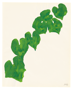 <I>Wild Grape</i> 1960 Ink on paper 16 3/4 x 13 3/4 inches; 43 x 35 cm