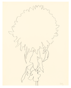 <I>Chrysanthemum</i> 1965 Graphite on paper 28 1/2 x 22 1/2 inches; 72 x 57 cm