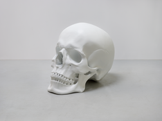 <I>Schädel / Skull</i> 2017 Polyester, paint 45 5/8 x 57 7/8 x 37 inches; 116 x 147 x 94 cm