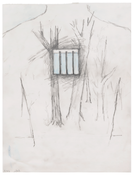 <i>Untitled</i> 2017 Graphite and pastel on Vellum 12 x 9 inches; 31 x 23 cm