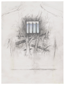 <i>Untitled</i> 2017 Graphite and colored pencil on Vellum 12 x 9 inches; 31 x 23 cm