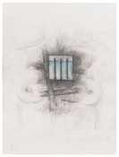 <i>Untitled</i> 2017 Graphite, colored pencil and pastel on Vellum 12 x 9 inches; 31 x 23 cm