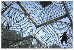 <i>Rat and Bear (Flying)</i> 2008-2009 Cotton, wire, polyester, and steel Puppets: each 55 x 17 3/4 inches; 140 x 45 cm Hanger: approx. 200 inches; 500 cm Installation View, Palacio Cristal, Madrid