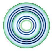 <i>No. 175   SECHSUNDZWANZIGSTERFEBRUARZWEITAUSENDNULL</i> 2000 acrylic on canvas 106 1/4 inches (diameter)