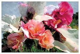 <i>Untitled</i> 1997-98 Inkjet print  29 1/8 x 42 1/8 inches; 74 x 107 cm