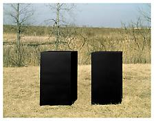 <i>For W.A.</i> 1969 Welded bronze, black patina 2 units, each: 60 x 46 x 33 inches; 153 x 117 x 84 cm Overall: 60 x 132 x 33 inches; 153 x 336 x 84 cm