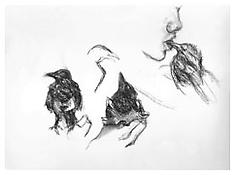 <i>Young Magpie</i> 1993 Charcoal and pastel on paper 18 1/8 x 24 7/16 inches; 46 x 62 cm