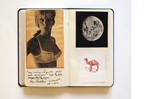 Brice Marden Notebooks