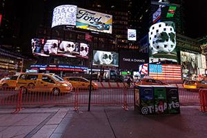 Peter Fischli David Weiss: Büsi (Kitty) in Times Square