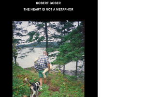 <i>Robert Gober: The Heart Is Not a Metaphor</i> Lambda Literary Award Finalist