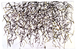 <I>St. Barts 10</i> 1989-91 Ink on handmade paper 10 3/4 x 16 inches; 27.5 x 40.5 cm