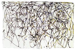 <I>St. Barts 11</i> 1989-91 Ink on handmade paper 10 3/4 x 16 inches; 27.5 x 40.5 cm