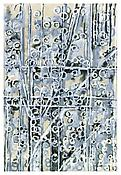 <i>Scattering Conditions, 7</i> 1998 Ink, acrylic, casein and charcoal on paper 30 1/8 x 44 1/4 inches; 76 x 112 cm