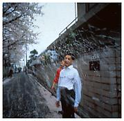 <i>Honda Brothers in cherry blossom storm, Tokyo</i> 1994 Cibachrome 40 x 40 inches; 102 x 102 cm