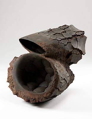 Metavoid 19, 2011