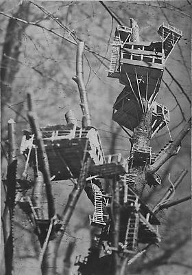 Tree dwellings, 2003 photogravure on Somerset Soft White paper 85,72 x 59,05 cm edition of 8 3,500. € including tax