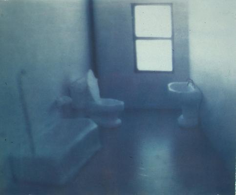 <i>Soap Bathroom</i>, 1997 gum print on Somerset white paper 48.3 x 58.4 cm (19 x 23 in.) edition of 2 1.750 € including tax