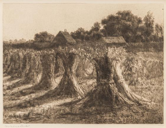 Hermann Struck  Wheat sheaves, 1900 Etching 12.4 by 9.33 inches (31.5 by 23.7 cm) Framed: 21 1/2 x 17 1/4 inches Edition 127 of 150 (Inv# HS3109)