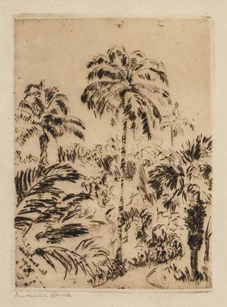 Hermann Struck Palm Beach Florida, 1913 Etching 5.39 by 7.4 inches (13.7 by 18.8 cm) Framed: 13 3/4 x 17 3/4 inches Edition 13 of 100 (Inv# HS2998)
