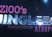 Z100's Jingle Ball 2012