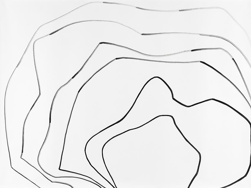 """Silvia Bächli<br />Untitled (part of the installation """"das"""")<br />2009<br />gouache on paper<br />59 1/16 x 78 3/4 inches<br />(150 x 200 cm)<br />"""