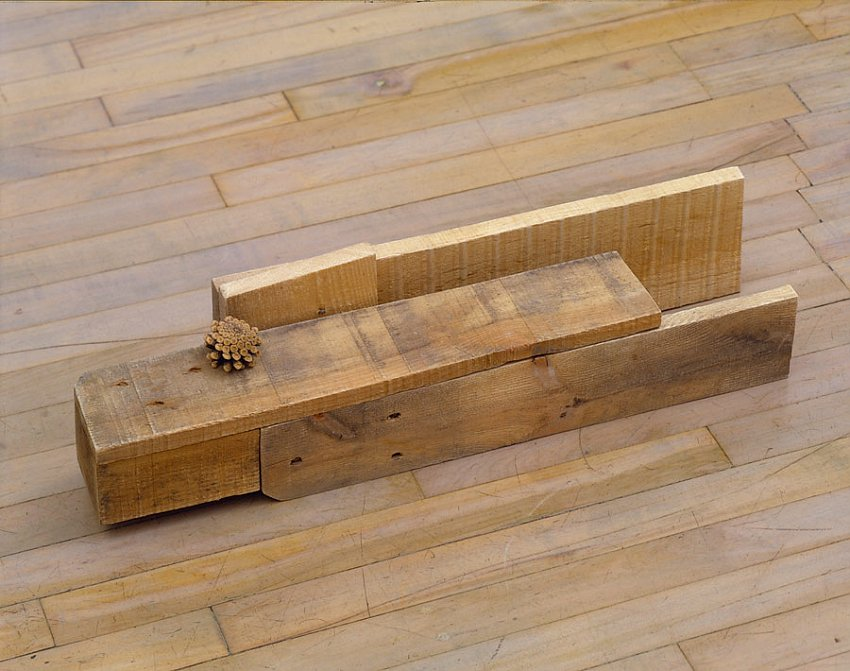 Helen Mirra<br />Emerson<br />	2006<br />	pallet wood, pine cone<br />	6 5/8 x 25 3/8 x 6 inches<br />	 (17 x 65 x 15cm)<br />