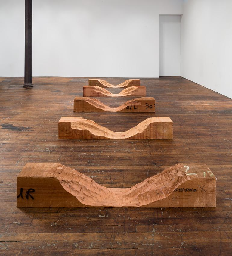 David Adamo<br /><br />Untitled<br />2016<br />western red cedar in 5 parts<br />dimensions variable: <br />installed for 2016 PFI exhibition: 11 3/4 x 284 1/2 x 78 3/4 inches<br />(29.8 x 722.6 x 200 cm)<br />five components, each: 11 3/4 x 78 3/4 x 12 inches<br />(29.8 x 200 x 30 cm)<br />PF4023<br />