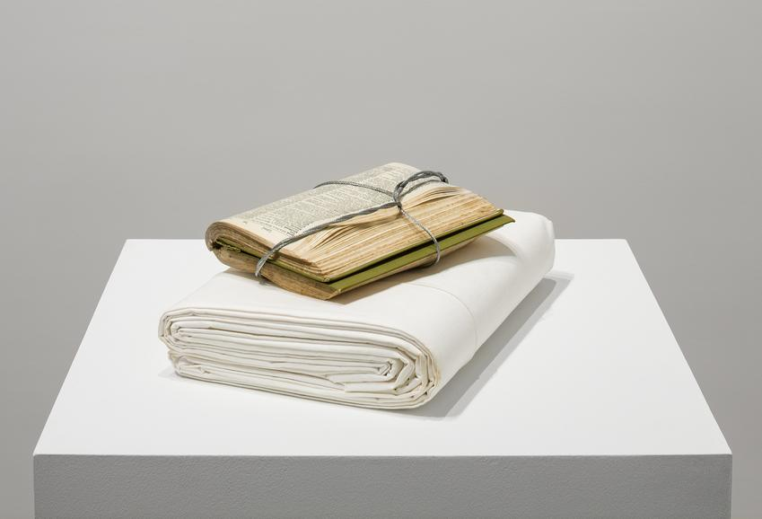 <u>First and Last Word</u>, 2017<br />dictionary, soldered galvanized cable, and unused linen bed sheet<br />3 3/4 x 12 x 8 inches (9.5 x 30.5 x 20.3 cm)<br />
