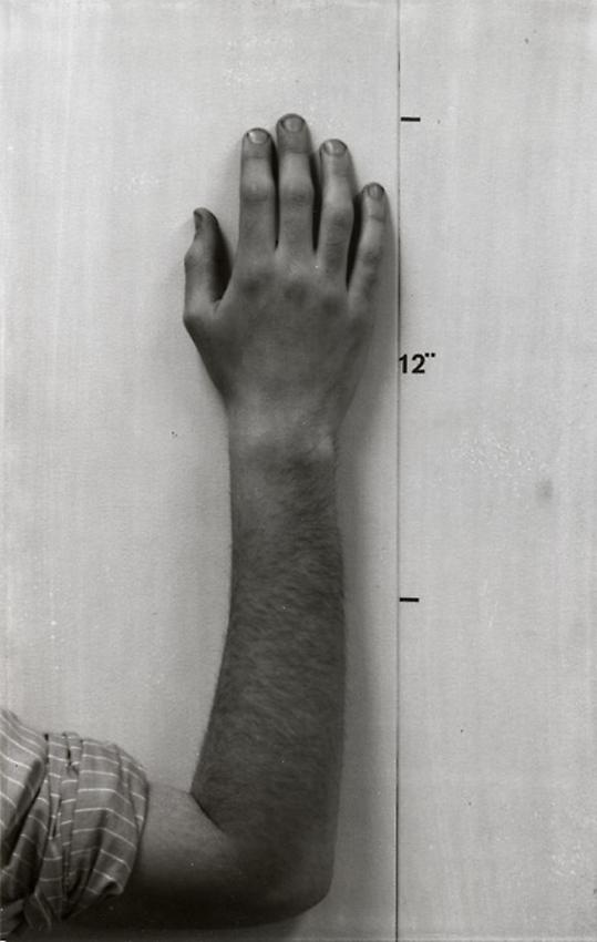 Mel Bochner<br />Actual Size [Hand (dyprich)]<br />1968 (printed 2002) edition 3 of 5<br />gelatin silver print<br />22 x 14 1/4 inches<br />  (55.9 x 36.2 cm)<br />
