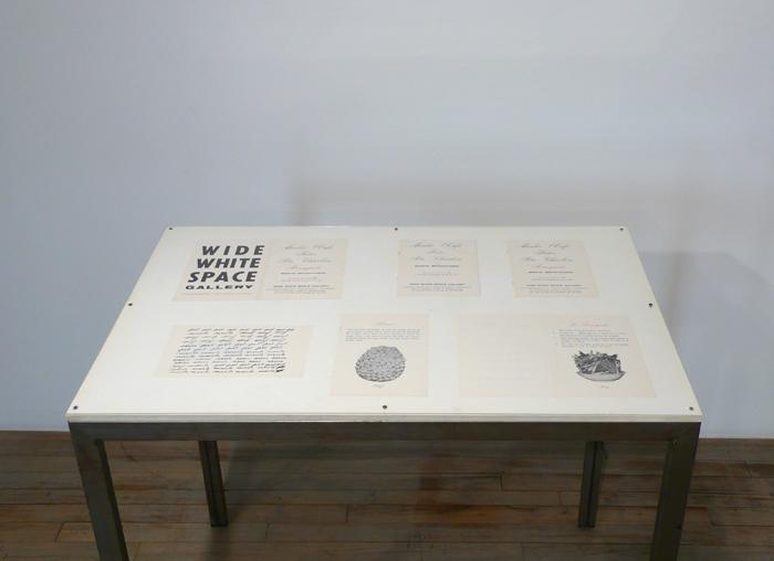 "Marcel Broodthaers		(1924 - 1976)<br />Ne diets pas que je ne l'ai pas dit - Le Perroquet<br />1974<br />caged African Grey Parrot, two palm trees, a vitrine containing Broodthaers's catalogue from 1966 exhibition at Wide White Space along with a reprint from 1974, and a recording of the artist reading the poem ""Moi Je dis Je Moi Je dis Je...""<br />"