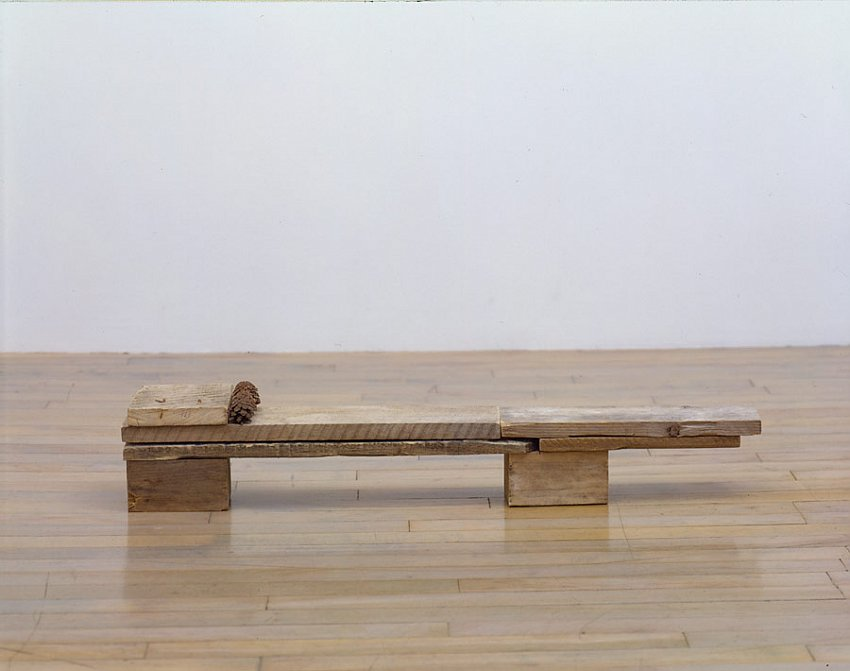Helen Mirra<br />Oneonta<br />	2006<br />	pallet wood, pine cones<br />	6 1/4 x 34 3/4 x 5 11/16 inches<br />	 (16 x 89 x 15 cm)<br />