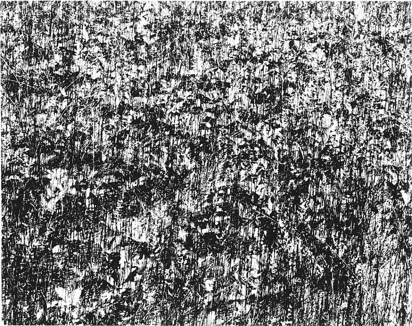 "HARRY CALLAHAN<br />Port Huron, Michigan<br />1952<br />early silver print<br />5-7/8 x 7-1/2"" (14.92 x 19.05 cm)<br />"