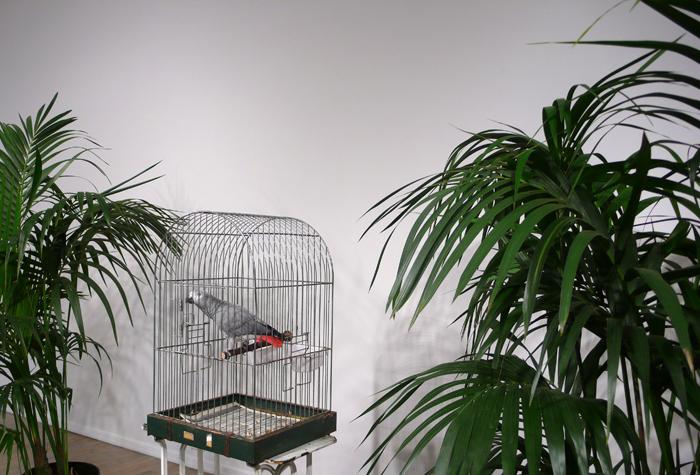 "MARCEL BROODTHAERS		(1924 - 1976)<br /><I>Ne diets pas que je ne l'ai pas dit - Le Perroquet</I><br />1974<br />caged African Grey Parrot, two palm trees, a vitrine containing Broodthaers's catalogue from 1966 exhibition at Wide White Space along with a reprint from 1974, and a recording of the artist reading the poem ""Moi Je dis Je Moi Je dis Je...""<br />"